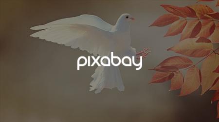 Free Stock Photo Websites - Pixabay